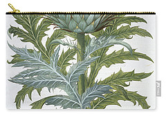 The Cardoon, From The Hortus Carry-all Pouch by German School
