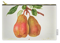 The Chaumontelle Pear Carry-all Pouch by William Hooker