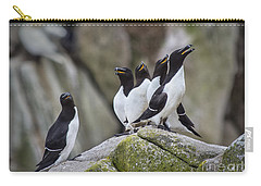 The Chorus Line Carry-all Pouch by Evelina Kremsdorf