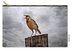 The Meadowlark's Song Carry-all Pouch by Elizabeth Winter