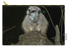 The Meerkat Carry-all Pouch by Chalet Roome-Rigdon