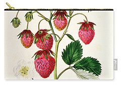 The Roseberry Strawberry Carry-all Pouch by Edwin Dalton Smith