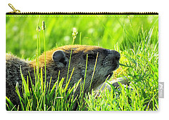 The Sound Of Silence Carry-all Pouch by Robyn King