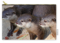 Three Otters Carry-all Pouch by Daniel Eskridge