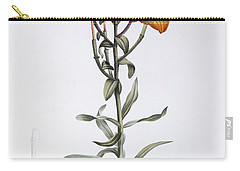 Tiger Lily Carry-all Pouch by Pierre Joseph Redoute
