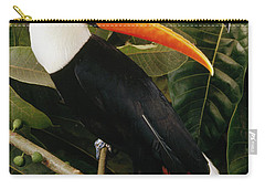 Toco Toucan Ramphastos Toco Calling Carry-all Pouch by Claus Meyer