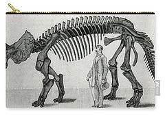Triceratops Carry-all Pouch by English School