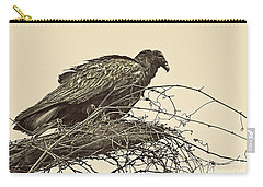 Turkey Vulture V2 Carry-all Pouch by Douglas Barnard