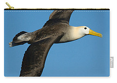 Waved Albatross Diomedea Irrorata Carry-all Pouch by Panoramic Images