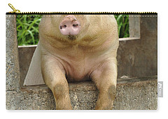 Well Hello There Carry-all Pouch by Bob Christopher