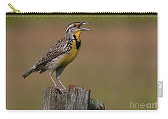 Western Meadowlark.. Carry-all Pouch by Nina Stavlund