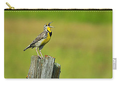 Western Meadowlark Carry-all Pouch by Tony Beck