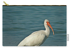 White Ibis Carry-all Pouch by Cindi Ressler