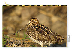 Wilson's Snipe Carry-all Pouch by James Peterson