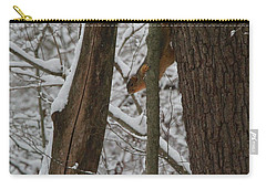 Winter Squirrel Carry-all Pouch by Dan Sproul