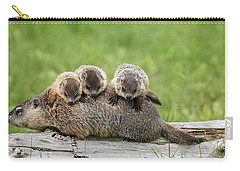 Woodchuck Carrying Young Minnesota Carry-all Pouch by Jurgen & Christine Sohns