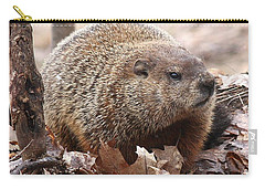 Woodchuck Watching Carry-all Pouch by Doris Potter