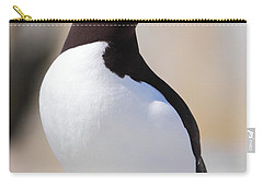 Razorbill Carry-all Pouch by Bruce J Robinson