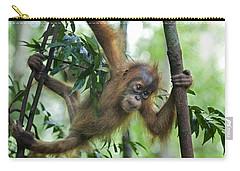 Sumatran Orangutan Baby  Carry-all Pouch by Suzi Eszterhas