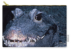 African Dwarf Crocodile Carry-all Pouch by Dante Fenolio
