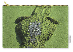 American Alligator Alligator Carry-all Pouch by Heidi & Hans-Juergen Koch
