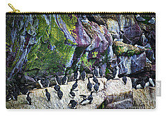Birds At Cape St. Mary's Bird Sanctuary In Newfoundland Carry-all Pouch by Elena Elisseeva