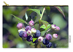 Blueberry Bunch With Raindrops Carry-all Pouch by Sharon Talson