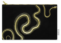 Boa Constrictor Skeleton Carry-all Pouch by Bob Christopher