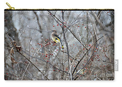 Cedar Wax Wing 3 Carry-all Pouch by David Arment