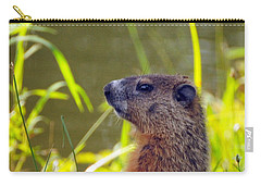 Chucky Woodchuck Carry-all Pouch by Paul Ward