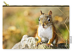 Cute Red Squirrel Closeup Carry-all Pouch by Elena Elisseeva