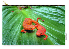 Double Newt Carry-all Pouch by Art Dingo
