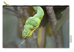 Emerald Tree Boa In Tree Costa Rica Carry-all Pouch by Tim Fitzharris