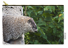 Groundhog Day Carry-all Pouch by Bill Cannon