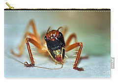 Jiminy Cricket Carry-all Pouch by Kaye Menner