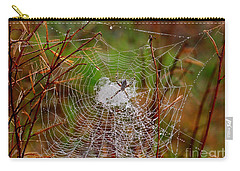 Marsh Spider Web Carry-all Pouch by Carol Groenen