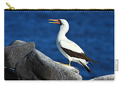 Nazca Booby Carry-all Pouch by Tony Beck