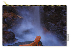 Newt Falls Carry-all Pouch by Ron Jones