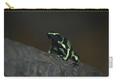 Poisonous Green Frog 03 Carry-all Pouch by Thomas Woolworth