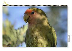 Pretty Bird Carry-all Pouch by Saija  Lehtonen