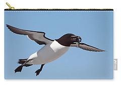 Razorbill In Flight Carry-all Pouch by Bruce J Robinson