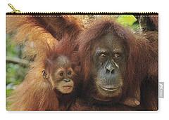 Sumatran Orangutan Pongo Abelii Mother Carry-all Pouch by Thomas Marent