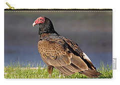 Turkey Vulture Carry-all Pouch by Robert Frederick