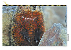 Woodchuck Carry-all Pouch by Tony Beck