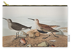 Red Backed Sandpiper Carry-all Pouch by John James Audubon