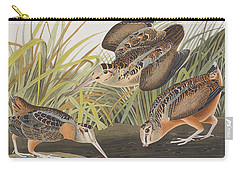 American Woodcock Carry-all Pouch by John James Audubon
