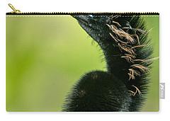 Anhinga Anhinga Anhinga, Tortuguero Carry-all Pouch by Panoramic Images
