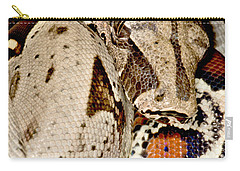 Boa Constrictor Carry-all Pouch by Dant� Fenolio