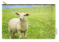 Cute Young Sheep Carry-all Pouch by Elena Elisseeva