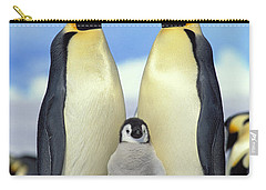 Emperor Penguin Aptenodytes Forsteri Carry-all Pouch by Konrad Wothe